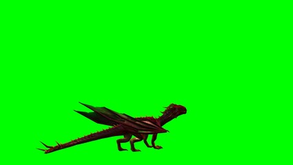 dragon animation - green screen