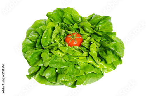 Lettuce salad and tomato isolated on white