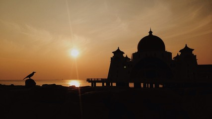 silhouette of a bird with mosque as background