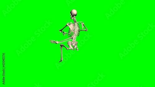 skeleton - various poses - green screen effect