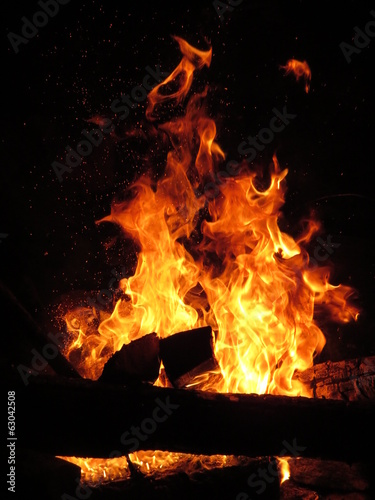 fire flame with calves in night