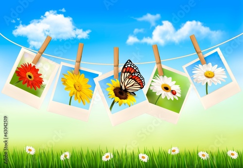 Nature background with photos of flowers and a butterfly. Vector