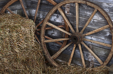 Old wooden wheel on a hay