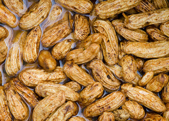 peanuts cleaning in water