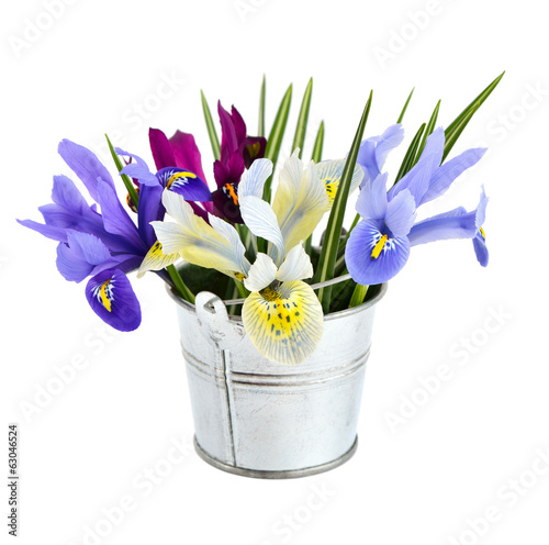 Small bucket with iris.