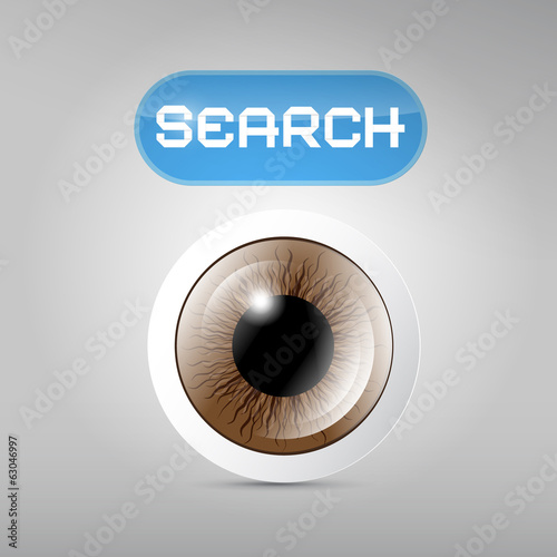 Vector Brown Eye and Search Button on Grey Background