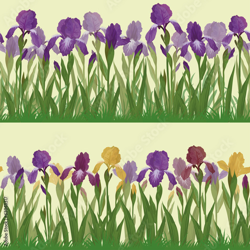 Flowers iris, set seamless