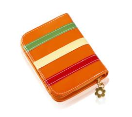 Beautiful design fashion lady wallet isolated on white