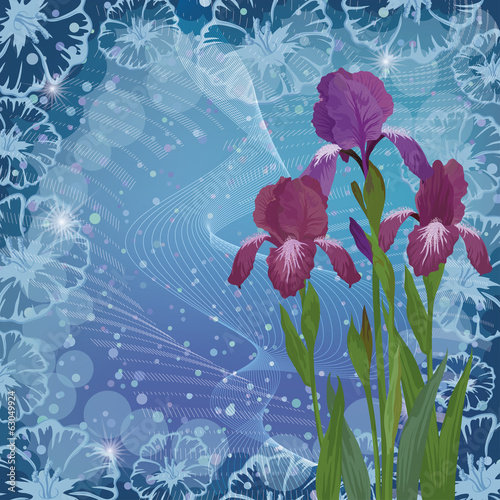 Flowers iris for holiday design