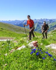 Bergwanderer im Sommer