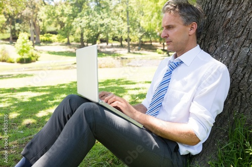 Mature businessman using laptop in park