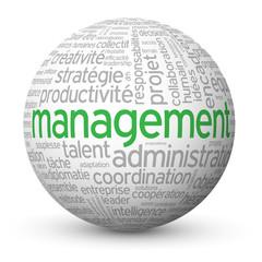 "Globe - Nuage de Tags ""MANAGEMENT"" (gestion ressources humaines)"