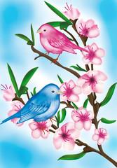 uccellini con fiori