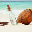 A letter in a bottle and a coconut on the beach