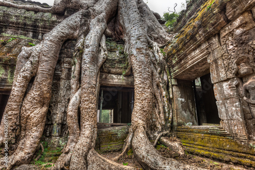 Ancient stone door and tree roots, Ta Prohm temple, Angkor, Camb - 63056973