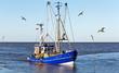 Krabbenkutter mit Möwen - 63060136