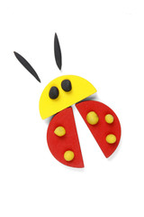 ladybird of geometric figures