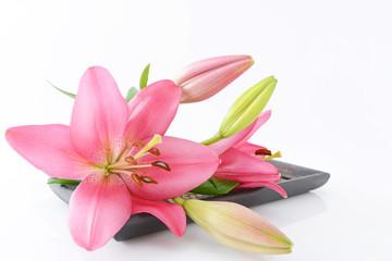 ユリの切り花
