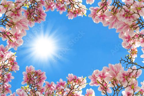 Deurstickers Magnolia Magnolien Rahmen - Manolia frame