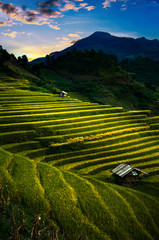 Rice fields on terraced in sunset at Mu Cang Chai, Vietnam