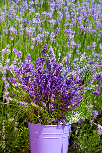 Metal bucket with lavender