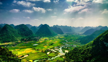 Rice fields on mountain in vietnam