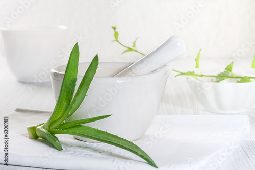 Aloe vera leaves and medical mortar.