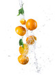 Pieces of oranges in water splash