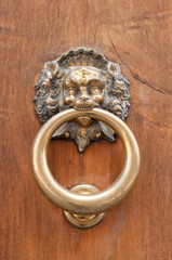 Lion shaped door knocker