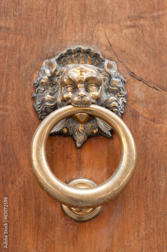 Lion shaped door knocker