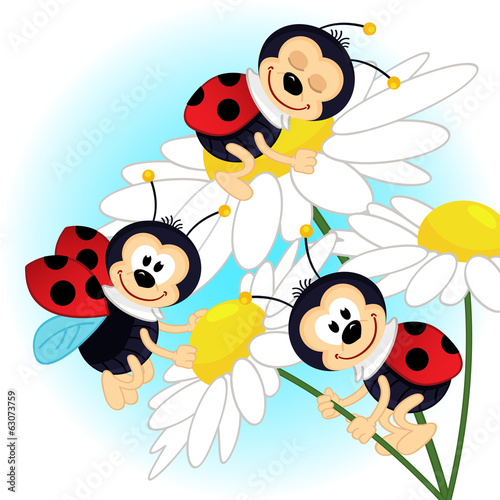 ladybug on camomile - vector illustration