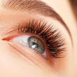 Постер, плакат: Woman eye with long eyelashes Eyelash extension