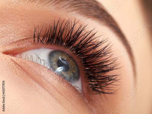 Poster Woman eye with long eyelashes. Eyelash extension