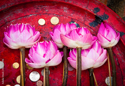 canvas print picture Lotus flower for Buddhist religious ceremony
