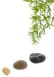 décor relaxant zen : bambou et galets