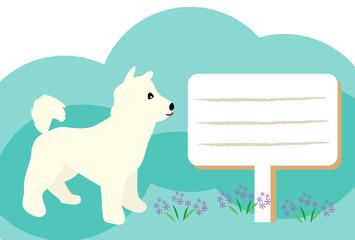 白い犬と野花のメッセージカード