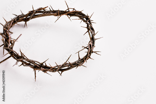 Crown of Thorns over White