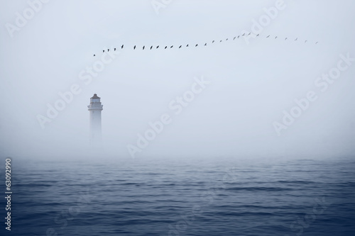 In de dag Water planten misty sea
