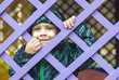 little baby boy  looking through blue fence