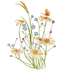 artistic bouquet of field flowers:chamomile,wheat,clover