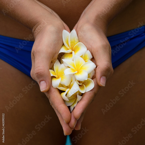 Frangipani flower in the hands of the girl near the pool