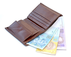 Purse with the Ukrainian money on a white background