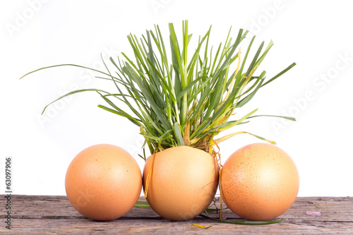 easter eggs with grass and flower