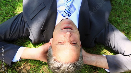 Happy businessman lying on the grass