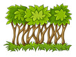 Bush with green leaves on grass. Eps10 vector illustration.