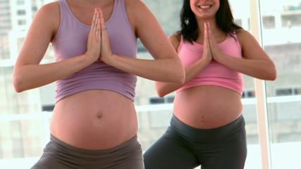 Pregnant women doing yoga in fitness studio