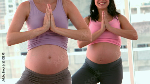 Pregnant women doing yoga in fitness studio