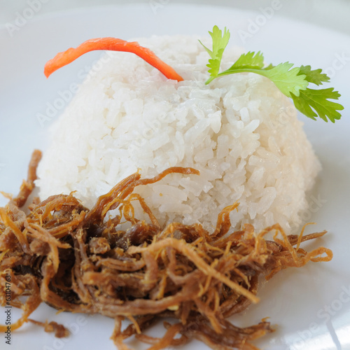 Shredded pork with jasmine rice