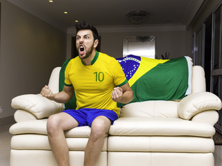 Brazilian fan celebrates at home