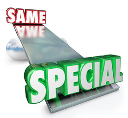 Special Vs Same Words See Saw Balance Unique Different